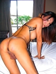 Poom  loves to be treated fully as a woman, but also knows that European and American men are attracted to her whole package