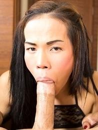 Busty Thai ladyboy Joy in black lingerie suck cock