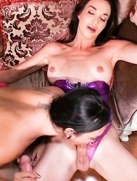 drilled hard and fucked bareback