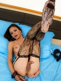 Kathoey Wicky dressed to fuck in slutty black anal lingerie